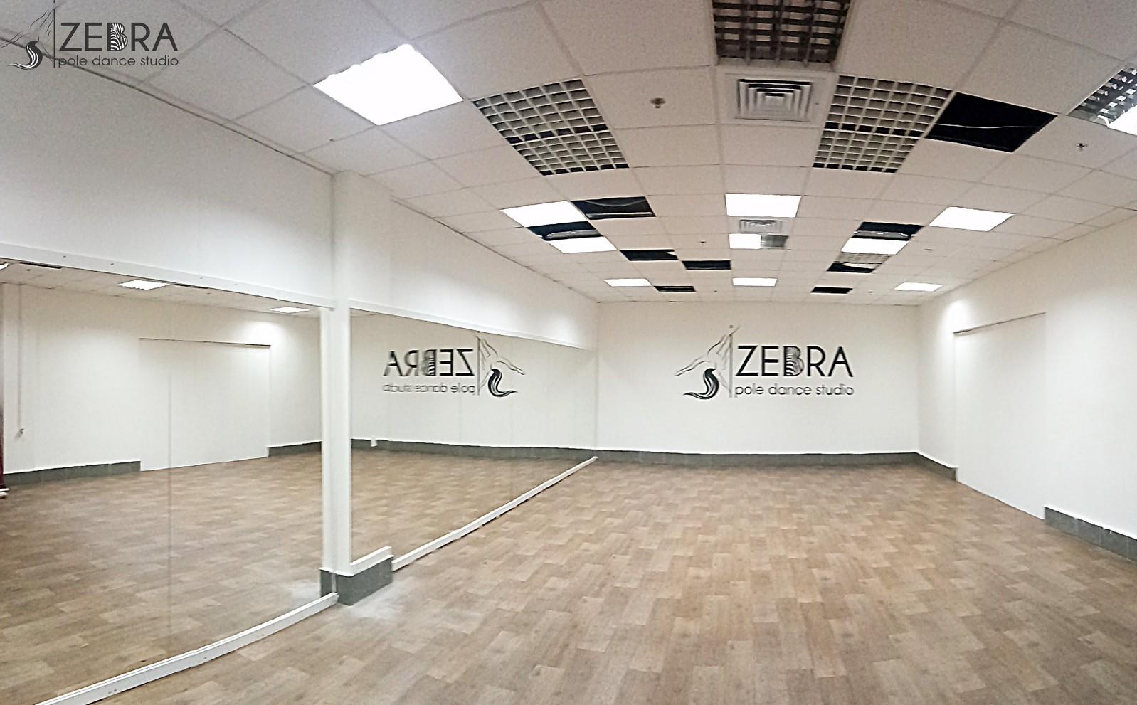 ZEBRA_centr2
